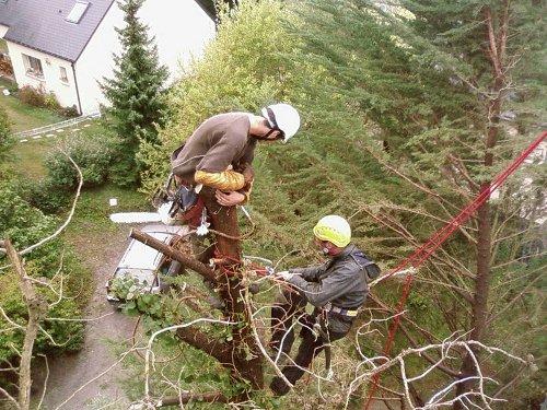 grimpeur avec harnais démonte un arbre proche d'une maison